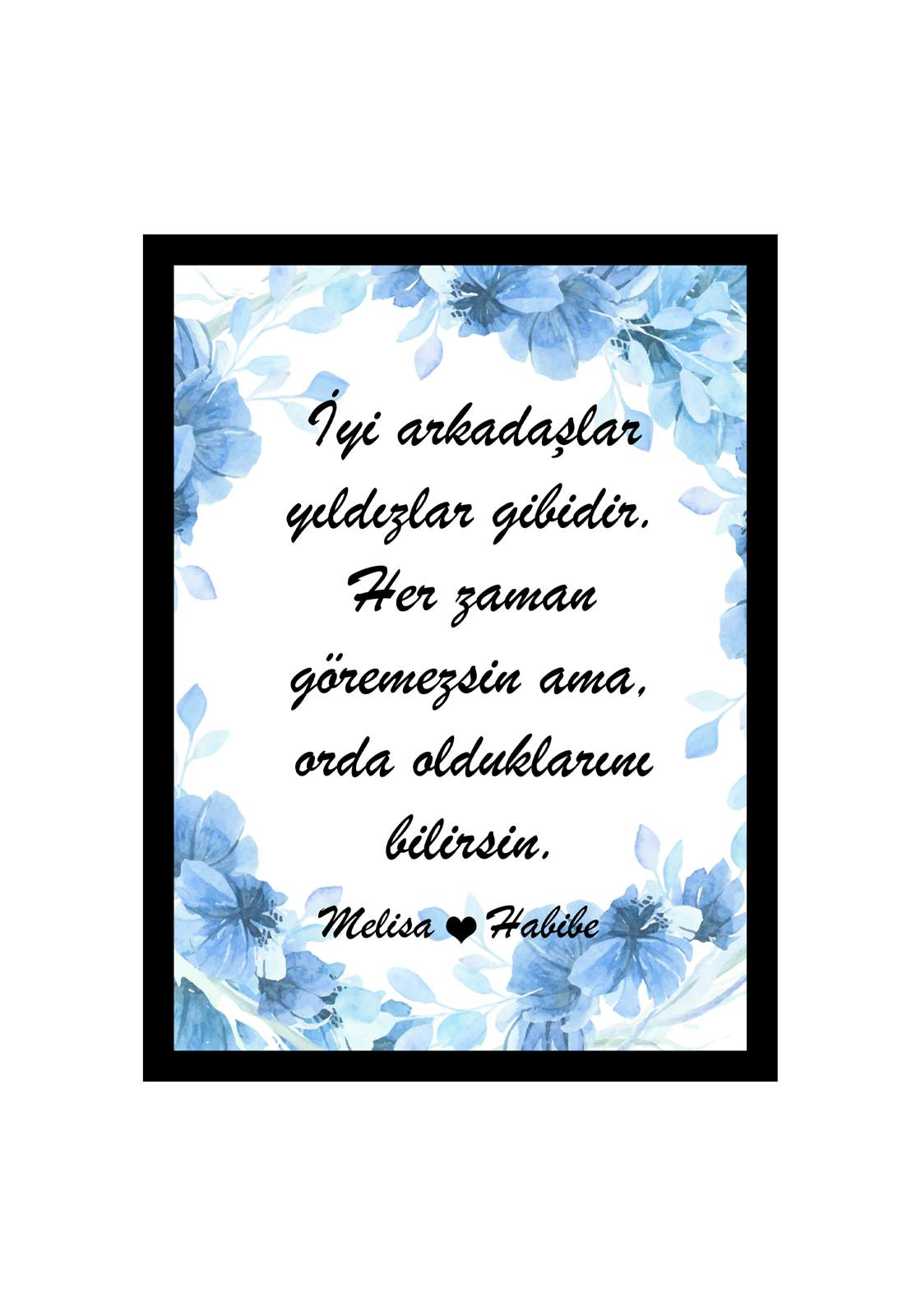 Dost_opt